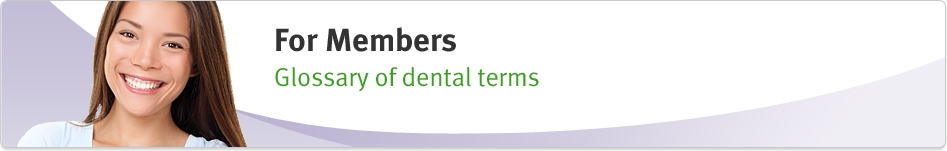 Glossary of Dental Terms